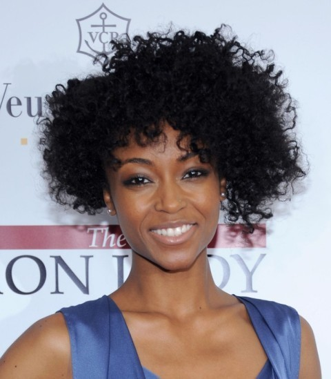 African American Natural Short Hairstyles – CircleTrest